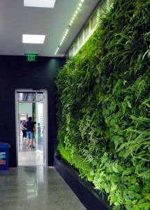 JCCC Greenwall