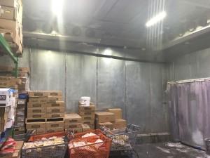 Grocery freezer lights
