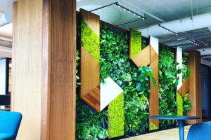 EnviroZone Design Completes Another Amazing Greenwall using SST's Fixtures