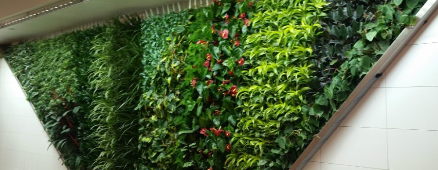 Gorgeous New Green Wall by Green Over Grey uses SST's Fixtures!