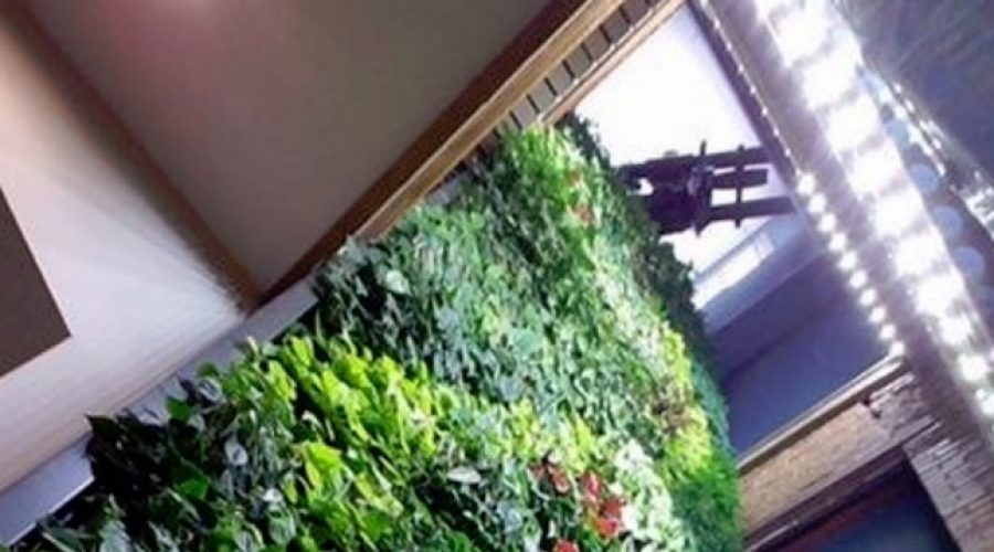 """New """"Elevator"""" Green Wall at Untappd Headquarters"""