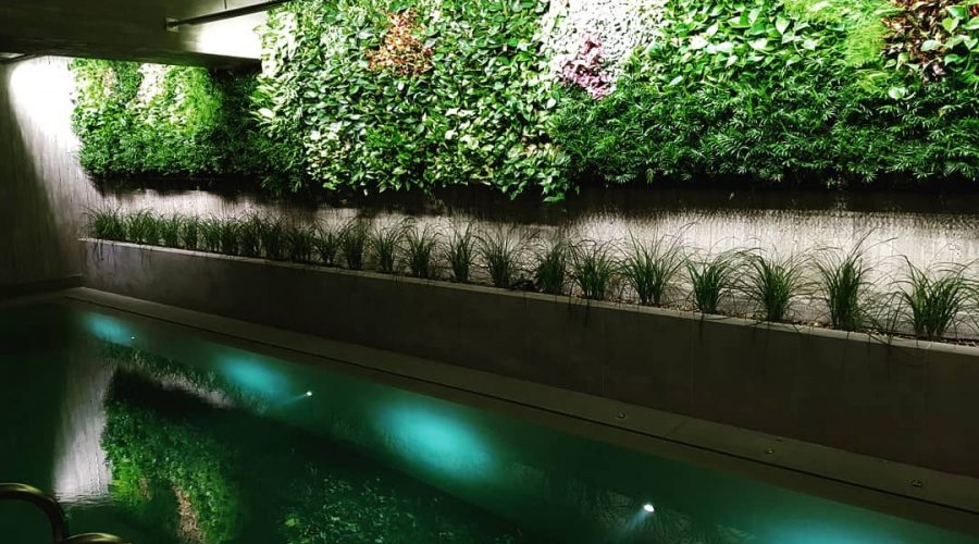 Hotel Green Wall in Athens, Greece