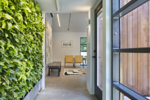 University of Kansas Studio 804 Green Wall