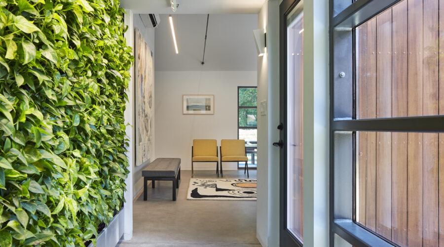 University of Kansas Studio 804 Green Wall