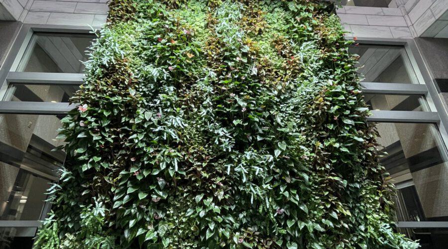 Minneapolis Green wall